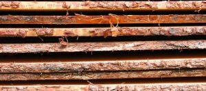 Blockware Rinde von Holz-Hauff in Leingarten