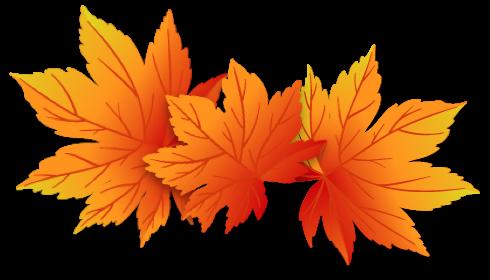 Herbstkampagne 2018 | Blätter | Holz-Hauff in Leingarten