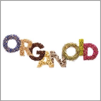 Lieferanten Organoid bei Holz-Hauff in Leingarten
