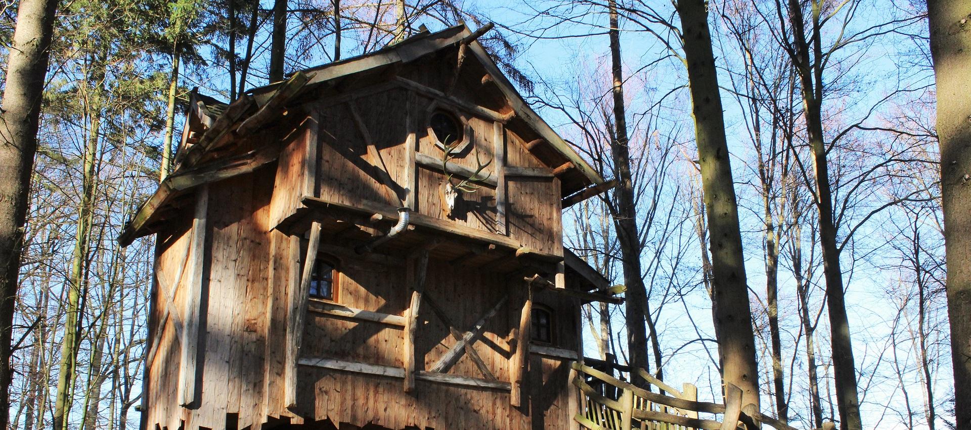 Robinienstämme Natur-Resort Tripsdrill von Holz-Hauff GmbH in Leingarten
